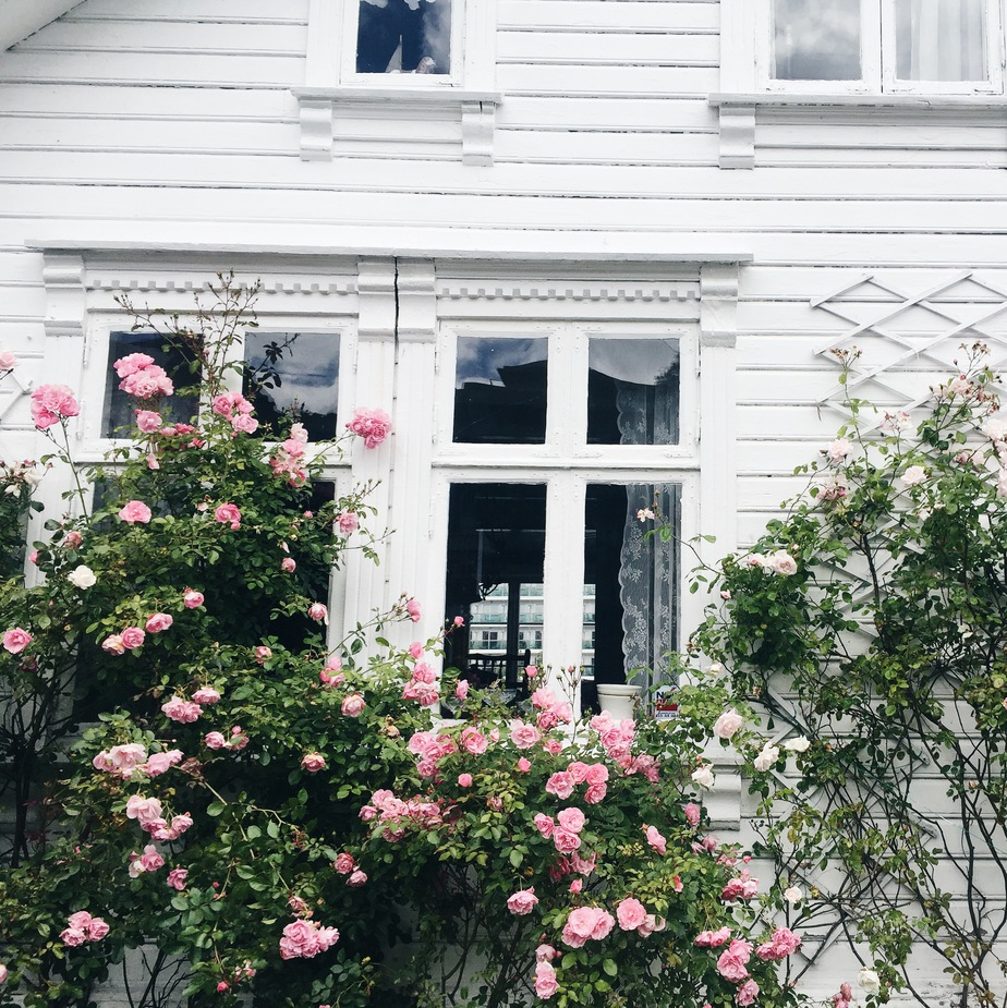 Stavanger, Norway | Stolen Inspiration Fashion Blog New Zealand